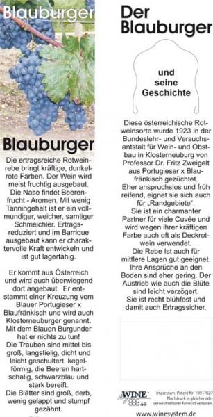 Rebsortenkarte Blauburger VPE 15 Stück