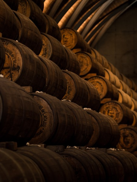 PAR® Expert II - Weinausbau Online Ausbildung